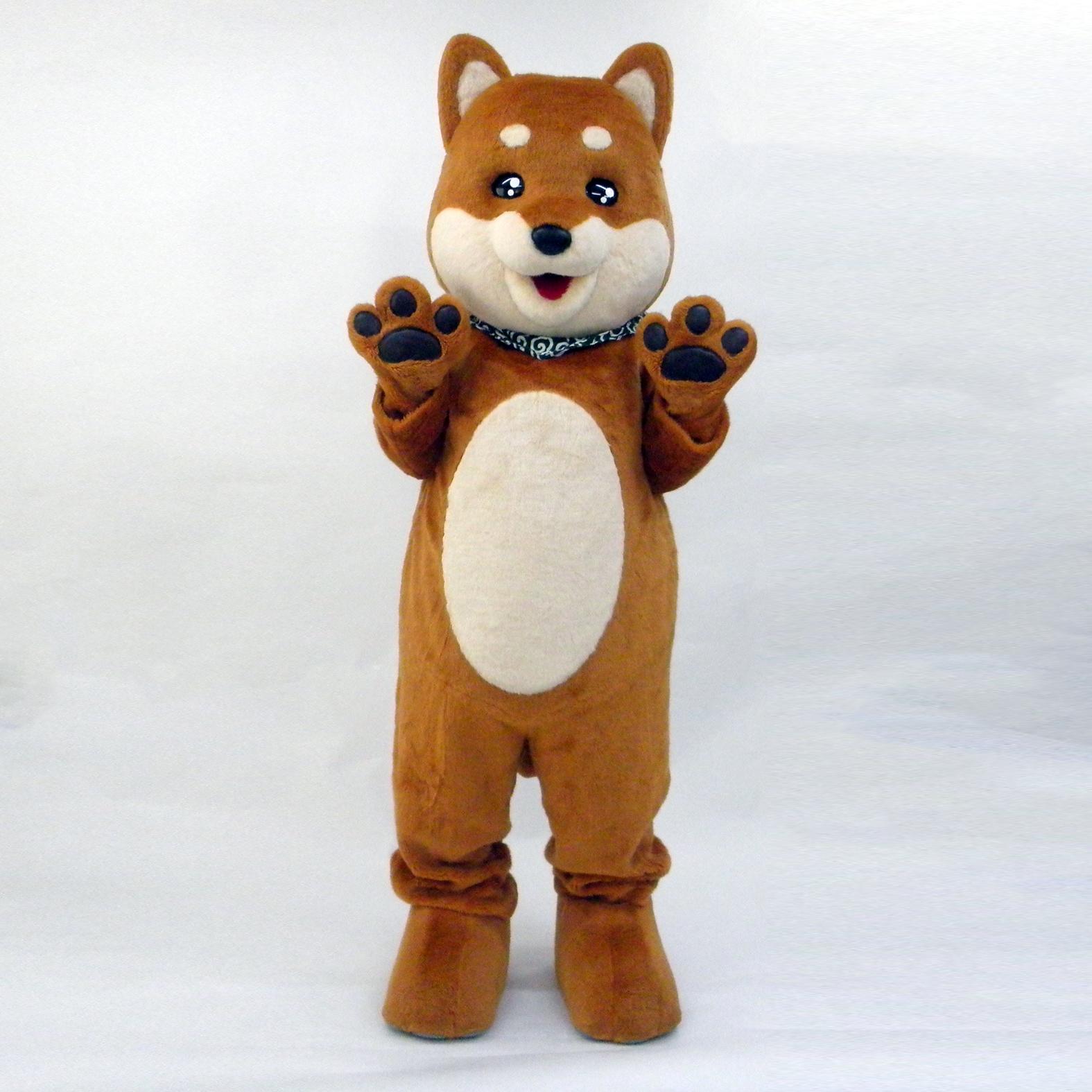 いぬ 柴犬 コタロウ